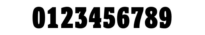 Berlingske Slab Display Black Font OTHER CHARS