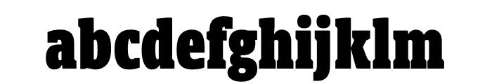 Berlingske Slab Display Black Font LOWERCASE