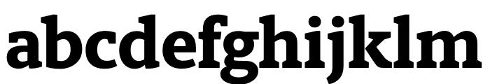 Berlingske Slab Extra Bold Font LOWERCASE