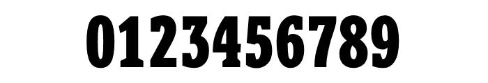 Berlingske Slab Extra condensed Extra Bold Font OTHER CHARS