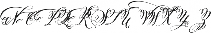Belluccia Swashes Bold otf (700) Font UPPERCASE