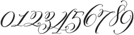 Belluccia Swashes Regular otf (400) Font OTHER CHARS