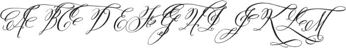 Belluccia Swashes Regular otf (400) Font UPPERCASE