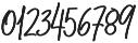 Belmont Bold Italic Alternates otf (700) Font OTHER CHARS