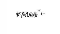 Bertha.ttf Font OTHER CHARS