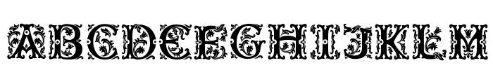 Beauty Initials Font UPPERCASE