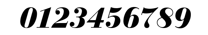 Bedini  Bold Italic Font OTHER CHARS