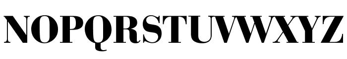 Bedini  Bold Font UPPERCASE