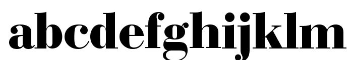 Bedini  Bold Font LOWERCASE