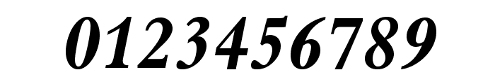BergamoStd-BoldItalic Font OTHER CHARS