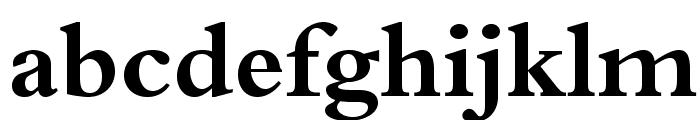 BergamoStd-Bold Font LOWERCASE
