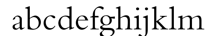 BergamoStd-Regular Font LOWERCASE