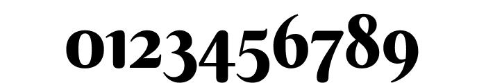 Berkshire Swash Regular Font OTHER CHARS
