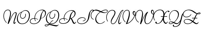 BernHardOpti-LightCursive Font UPPERCASE