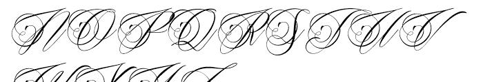 Beaked Tyrant Regular Font UPPERCASE