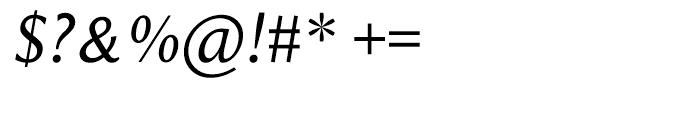 Beaulieu Regular Italic Font OTHER CHARS