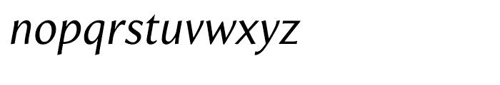 Beaulieu Regular Italic Font LOWERCASE