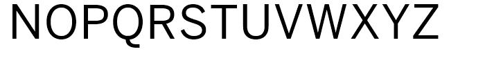Benton Sans Regular Font UPPERCASE