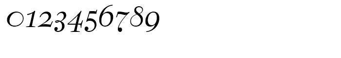 Bernhard Modern Italic Swash Font OTHER CHARS