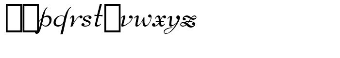 Bernhard Modern Italic Swash Font LOWERCASE