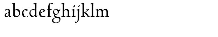 Bertham Regular Font LOWERCASE