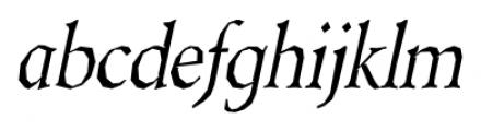 Berylium Italic Font LOWERCASE