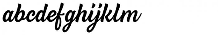 BeachBar Script Medium Font LOWERCASE