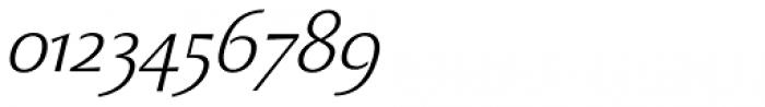 Beatrix Antiqua Light Italic Font OTHER CHARS