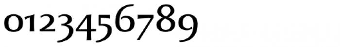 Beatrix Antiqua Regular Font OTHER CHARS