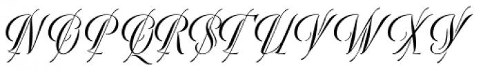 Bellezza Font UPPERCASE