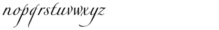 Bellezza Font LOWERCASE