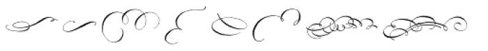 Belluccia Flourishes Font LOWERCASE