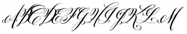 Belluccia Pro Bold Font UPPERCASE