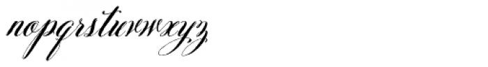 Belluccia Pro Bold Font LOWERCASE
