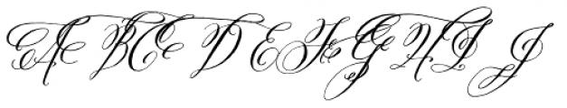 Belluccia Swashes Font UPPERCASE