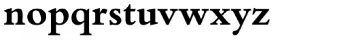 Bembo Book Pro Bold Font LOWERCASE