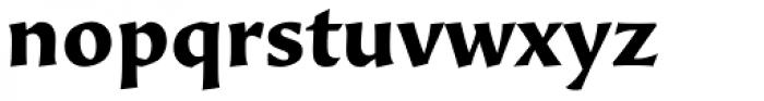 Beorcana Pro Bold Font LOWERCASE