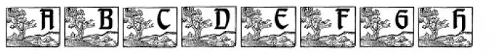 Berengard Caps Two Font UPPERCASE