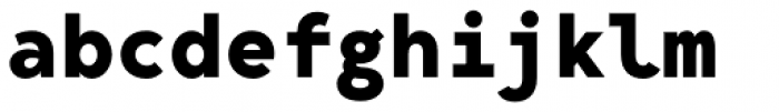 Bergen Mono Bold Font LOWERCASE