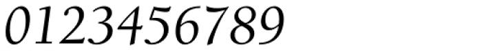 Berkeley Std Italic Font OTHER CHARS