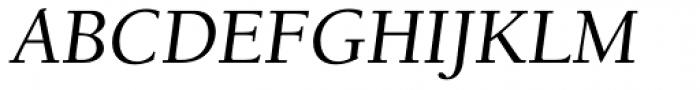 Berkeley Std Italic Font UPPERCASE