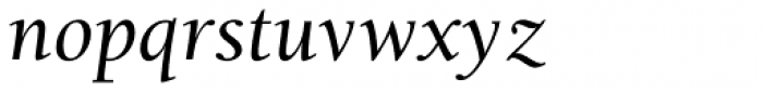 Berkeley Std Italic Font LOWERCASE