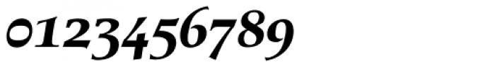 Berndal Bold Italic Font OTHER CHARS