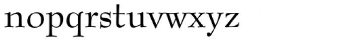 Bernhard Modern Font LOWERCASE