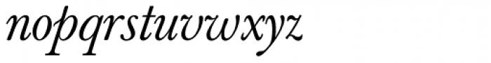 Berthold Baskerville Book Italic Font LOWERCASE