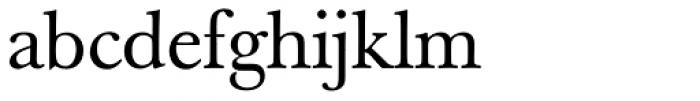 Berthold Baskerville Book Regular Font LOWERCASE