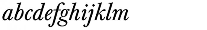 Berthold Baskerville Italic Font LOWERCASE