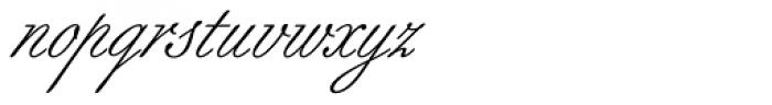 Berthold Script Pro Regular Font LOWERCASE