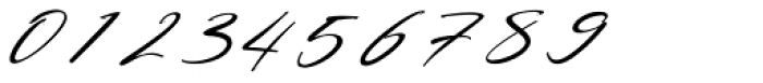 Bestowens Thin Italic Font OTHER CHARS
