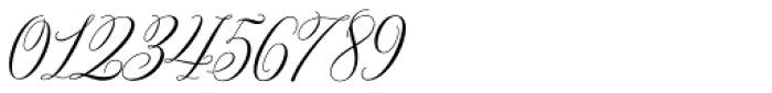 Bettrisia Script Alt Regular Font OTHER CHARS
